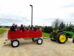 Fall Family Day at Rove @ Rove Estate Vineyard & Winery